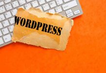 Beginner's Guide To Creating Website With WordPress